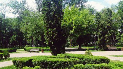 Der Stadtgarten