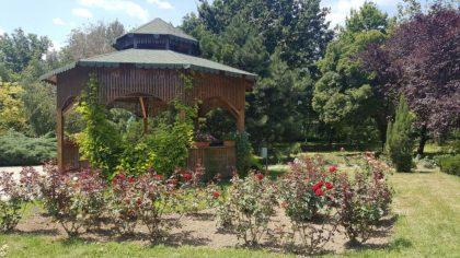 Der Botanische Garten des Naturkundemuseums