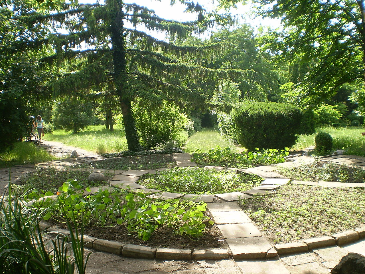 Botanischer Garten Iaşi